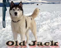Eight below Old jack