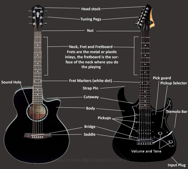 acoustic guitar parts. tutorial ,how to ,guitar