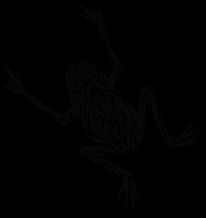 tatuaże żaby