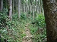 御岳山登山道