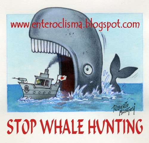 Essay On Stop Hunting Animals