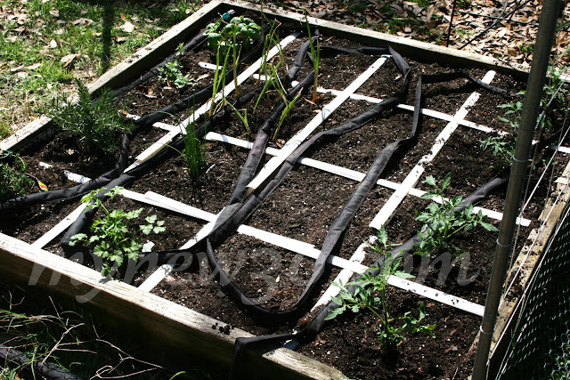 Soil Refresh For Year Two Raised Bed Square Foot Garden