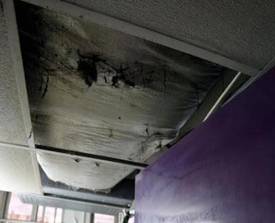 תקרה מתפוררת בבית חולים אבארבנאל בת ים  (צילום: מיכאל קרמר)