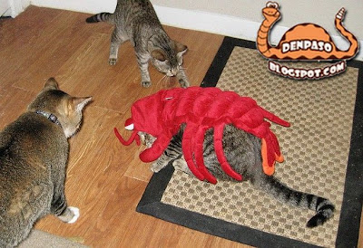 новогодние костюмы - костюм кальмара