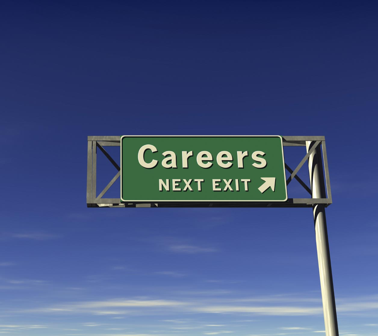 career development and counseling livebinder