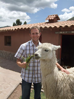 David and Camelid