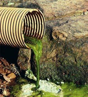 Pencemaran alam sekitar essay