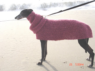 CROCHET DOG SNOOD - Crochet — Learn How to Crochet