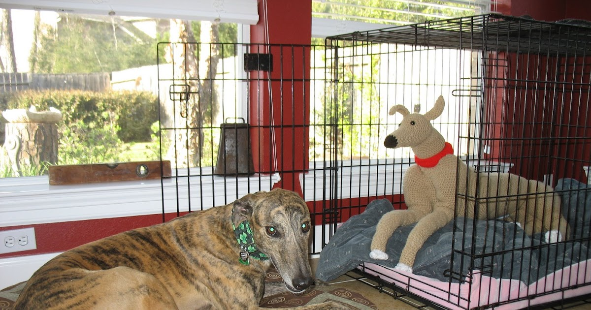 Crochet Critters Homes4hounds New Crocheted Greyhound Dog