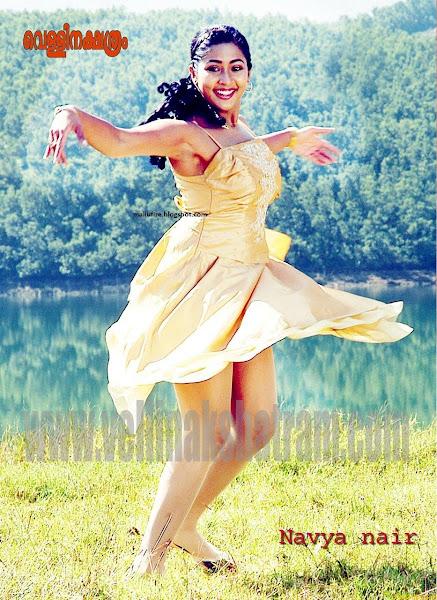 Navya Nair Hot Saree Navel