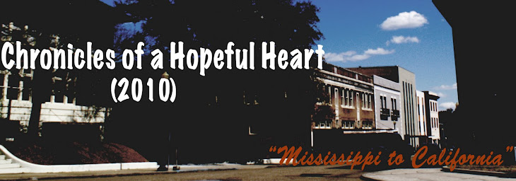 Chronicles of a Hopeful Heart