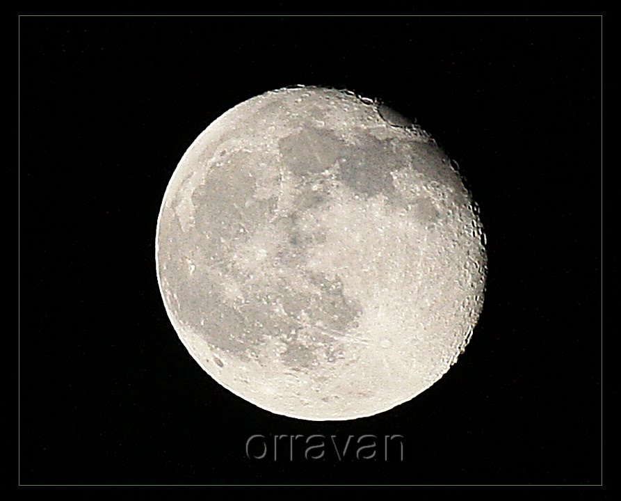 [Luna+casi+llena+++.jpg]