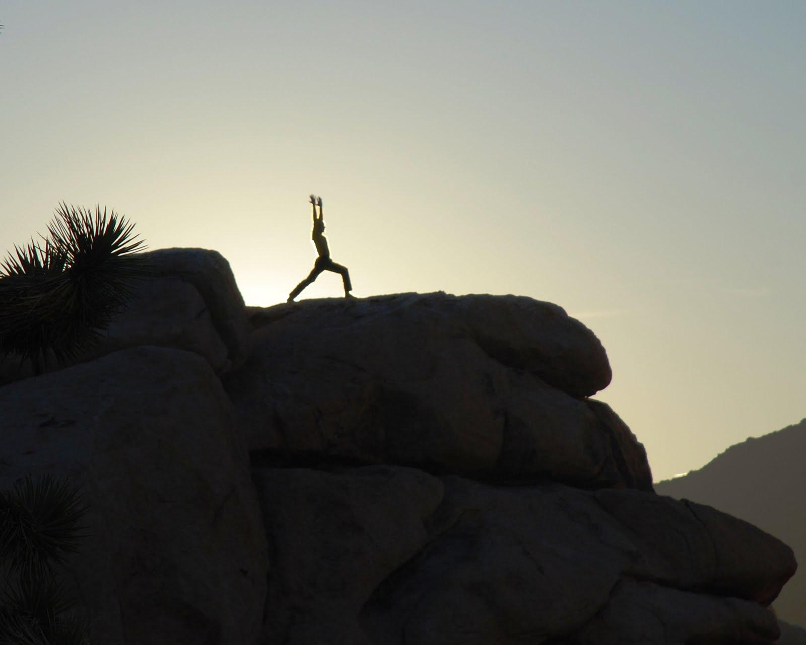 [Joshua+Tree+yoga-Warrior]