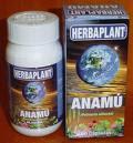 Planta de Anamú