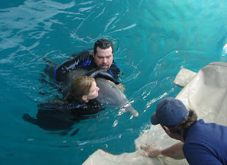Animal care director Diane Mitchell and associate swim with Winter prior to measuring the young dolphin for new prosthetic. Photo, H Weikle