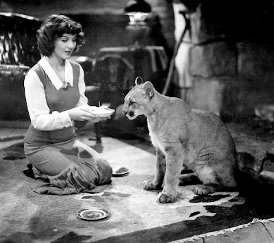 Jean Parker and a hungry cat.