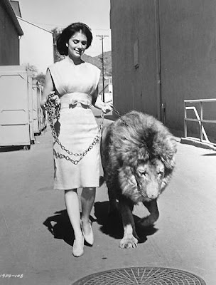 Shirley Jones walks her BIG kitten.