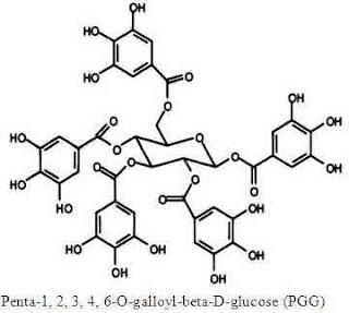 Penta-O-galloyl-beta-D-glucose