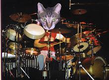 Progatto Drummer