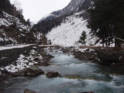 Peaks during winter season