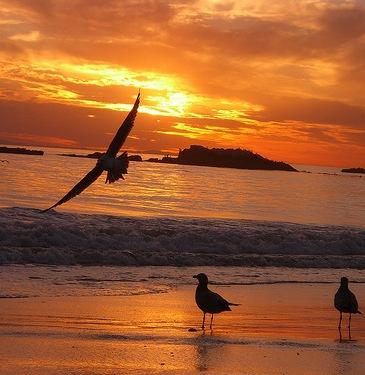 التغير المناخي .انذار من الله تعالى sunset.jpg