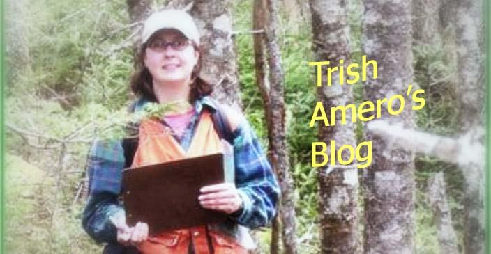 Trish Amero's Blog