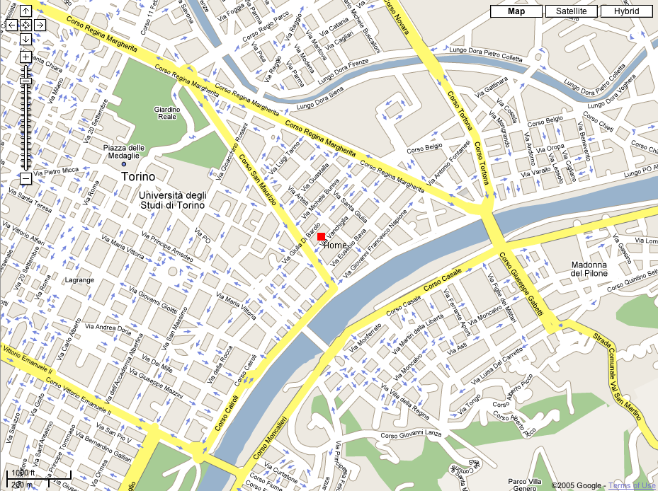 torino google map