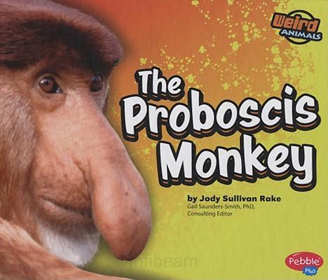 [proboscis+monkey]