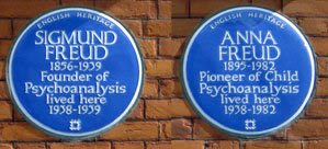 Freudian plaques