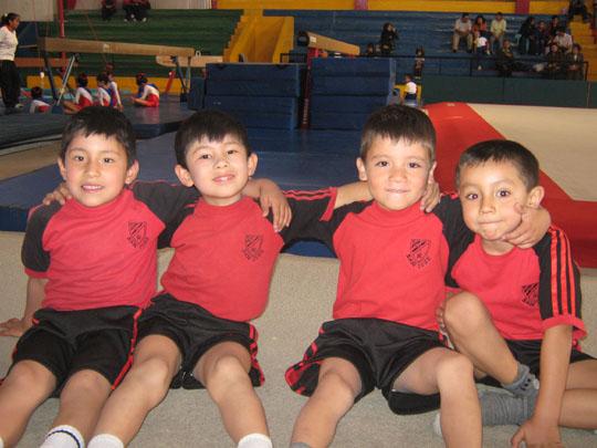 La gimnasia art stica como actividad f sica para el for Definicion de gimnasia