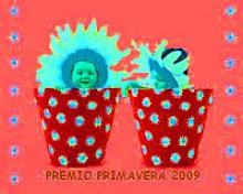 Premio Primavera 2009