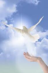 Asesora psicológica espiritual