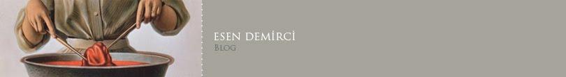 Esen Demirci // BLOG
