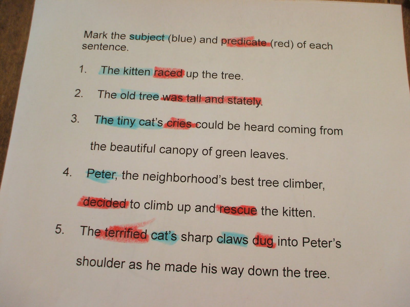 Compound Sentences And Subject Predicate Examples Pictures to Pin – Compound Subject and Predicate Worksheet