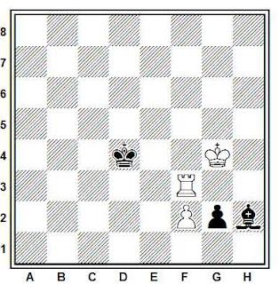 Problema ejercicio de ajedrez número 277: Estudio de A. A. Troitzky, 1899