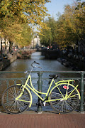 ¿Cómo logró su libertad/ la bicileta abandonada?