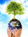 Preservacion del Medio Ambiente