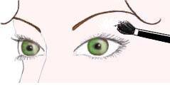 maquilhar e maquilhagem olhos verdes