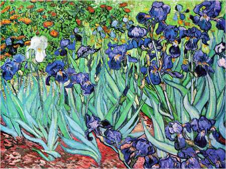 My painting room following van gogh 39 s irises for Van gogh irises