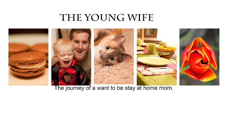The Young Wife