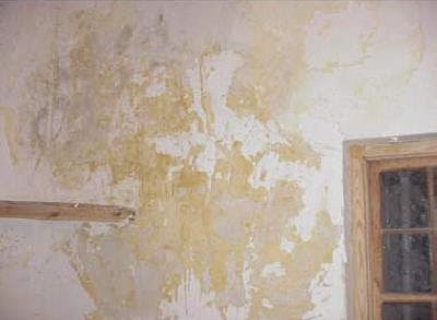Eliminar manchas de humedad y moho - Humedad en pared ...