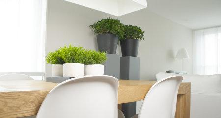 las de los tonos fros son varias una es aportar frescura a los espacios donde se utilizan otra es simular amplitud ya que los colores