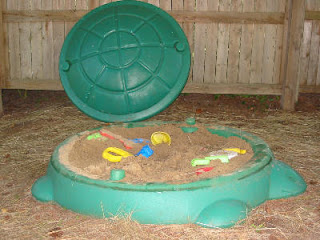 Photo of Turtle Sandbox