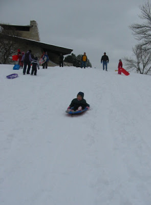 Joy Sleds Down the Hill