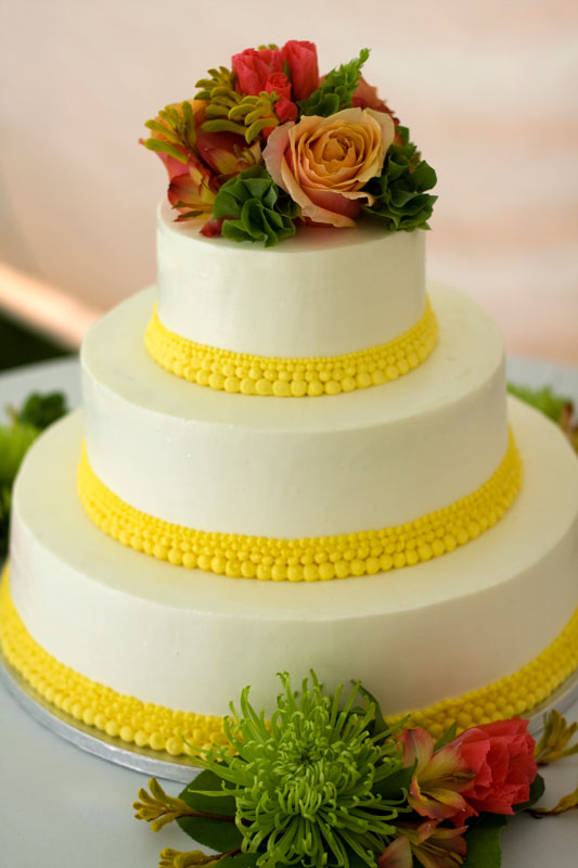 Rosario\'s blog: This homemade wishing well cake was made with two ...