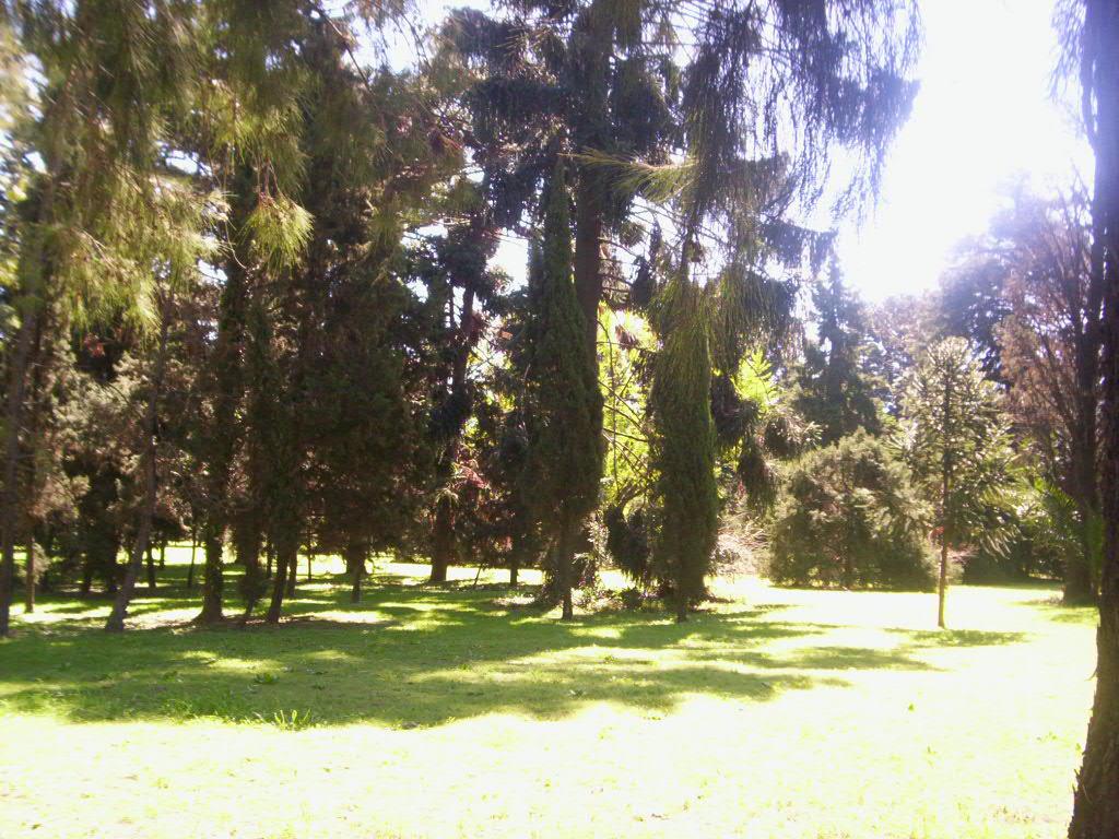 Mirando a buenos aires vivero del parque avellaneda for Vivero del parque