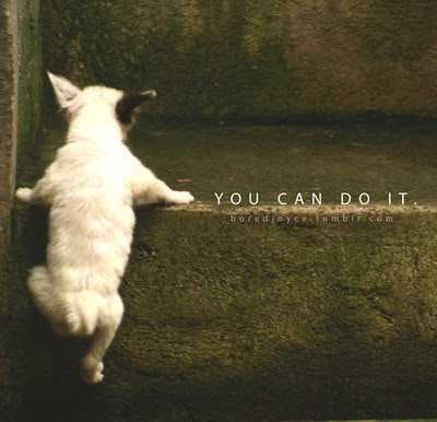 can do it quotes quotesgram