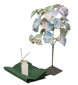 Is There really such a Thing as a Money Tree!
