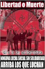 Resistencia Mapuche!