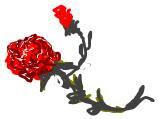 La flor de Je ♥